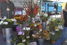 Denver Farmer's Markets / by Gretchen Rosenberg Faber