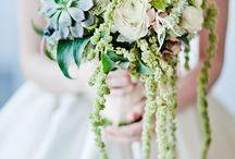 B_White&Green / by JollyBunch