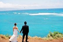 Wedding ideas & inspirations / by Kim Binnell