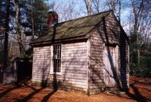Life in the Woods with Thoreau / Educational resources on making Walden relevant to students / by Josie Eyers