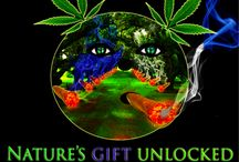 Nature's Gift Unlocked / www.naturesgiftunlocked.com / by Chemney Youngblunt