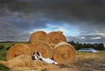 Bunbury & Ferguson Valley Weddings / by Coast to Country Weddings
