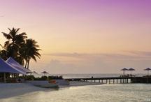 News Updates / Updates from Conrad Maldives / by Conrad Maldives