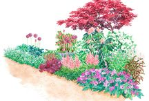 Gardening Stuff / by Amanda Del Vicario