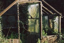 Greenhouses & Window Cloches / by The Keeping Room