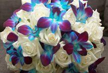 Wedding flowers / by Stephany Lanzziano