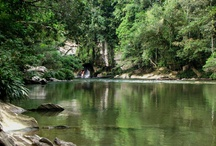 Day Trips in Colombia / by Colombia Eco Travel