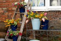gardening / by Kathy Robinson Zahn