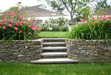 landscaping / by {Kim Fisher Photography}