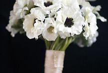 White bouquets / by MyItalian Wedding