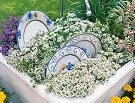 Garden & Outdoors / by Anne Martell