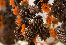Fall Craft / by erin nicole