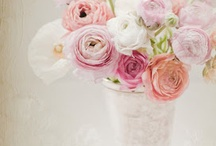 Beautiful Blooms / by Dawn Guarriello
