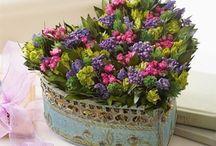 Flower arrange fresh flowers / by Maria Bertrand