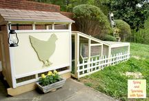 Chicken Coops / by Barb Evans