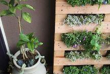 living art : plants / by Allie Felton