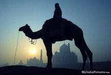 Incredible India / by Kamaldeep Singh SEO | Updates 2014