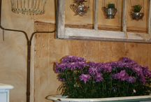Vintage shabby chic / by Noonan's Wine Country Designs