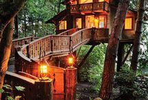 "Treehouses / Ever since I read ""Swiss Family Robinson"" I have wanted to live in a treehouse.  / by Cafe Pets"