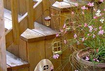 Fairy Garden / by Judi Vrieling
