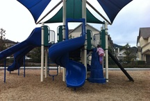 Play Parks of Marin / by MarinVacation California