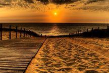 Beach / by Kathryn Wydenbach