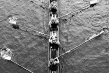 Rowing / by Erika Baranek