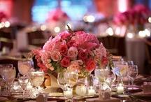 Wedding / by Carly Turner