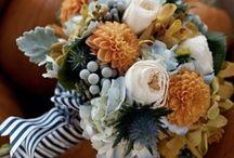 Ideas for Emma's wedding / by Megan Fuentes