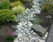 Landscaping~Gardening / by Nancy Sonnenberg