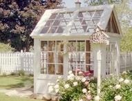 I need a greenhouse / by Bryn Zuarri-Davis