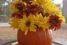 Fall Decoration / by Chrysa Duran