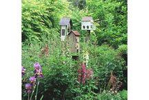 Yard & Garden / by Pam Duggan