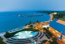 The Resort / by Hyatt Regency Chesapeake Bay Golf Resort, Spa & Marina