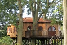 Tree Houses / by Staci Krell
