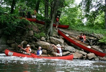The Bronx - Bronx River / by greensolutions