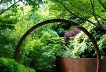 Jardin / Gardens / by Kayla Camp-Warner