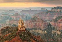 Arizona / by George McGowan