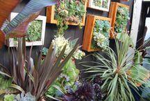 In the Garden / by Rosanna Inc.