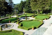 Interesting Landscapes / by Mueller Farms Landscaping