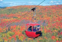 Fall Colors / Hillsides awash in color. Clear blue skies. Crisp clean air. Crinkly leaves underfoot. Autumn is wonderful at Caribou Highlands Lodge at Lutsen Mountains. / by Caribou Highlands Lodge on Lutsen Moutains