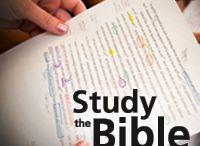 Bible / by Karen Karabin