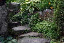 garden Addic / by Tuyen Tran