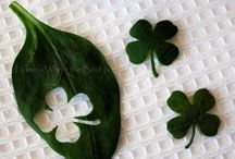 Saint Pat's Day / by Leigh Mccuen