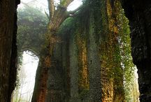 Ruins and Decay / by Cynthia Snyder