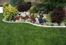 Landscaping / by Erin Smith