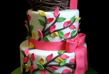 cakes / by Terri Hankle Such