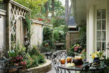 outdoor spaces/gardening / by Carolyn Anguiano