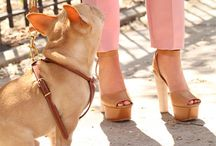 Divine Shoes / by Dose of Divine Website