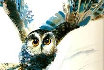 owls / by Olga wassupbrothers